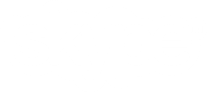 Image of the Skype logo.